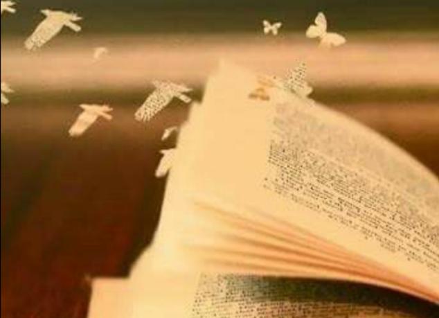 Sobre palabras bonitas...